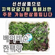 베이비순(어린잎)